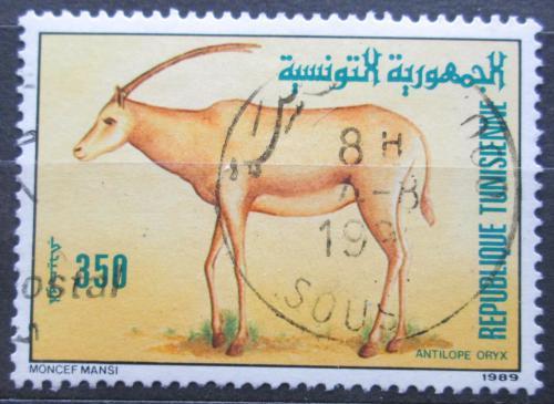 Poštovní známka Tunisko 1989 Pøímorožec africký Mi# 1195