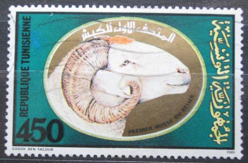 Poštovní známka Tunisko 1990 Muzeum chovu ovcí Mi# 1207