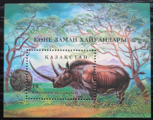 Poštovní známka Kazachstán 1994 Nosorožec srstnatý Mi# Block 3