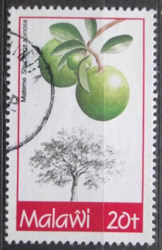 Poštovní známka Malawi 1993 Tropické ovoce Mi# 613