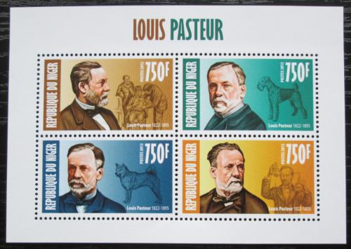Poštovní známky Niger 2013 Louis Pasteur, biolog Mi# 2333-36 Kat 12€