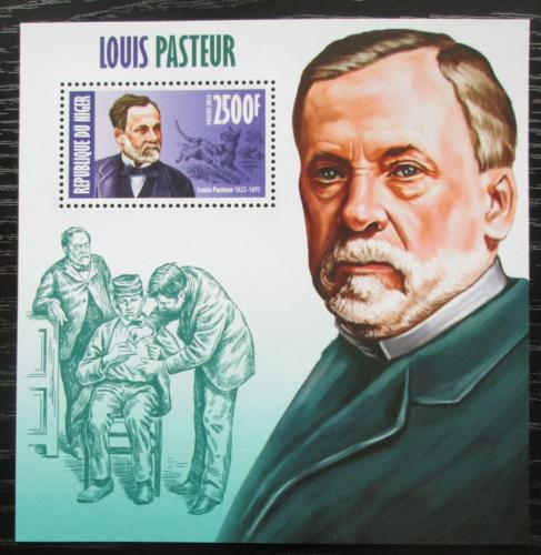 Poštovní známka Niger 2013 Louis Pasteur, biolog Mi# Block 207 Kat 10€