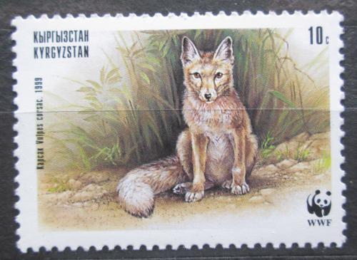 Poštovní známka Kyrgyzstán 1999 Korsak, WWF Mi# 168