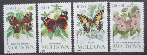Poštovní známky Moldavsko 1993 Motýli Mi# 77-80