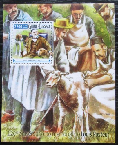 Poštovní známka Guinea-Bissau 2015 Louis Pasteur, vakcinace Mi# Block 1417 Kat 10€