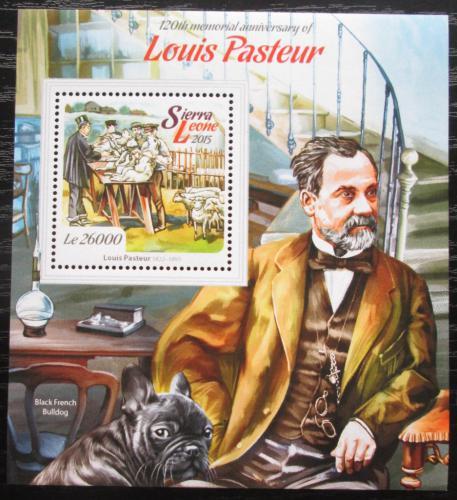 Poštovní známka Sierra Leone 2015 Louis Pasteur, vakcinace Mi# Block 767 Kat 12€