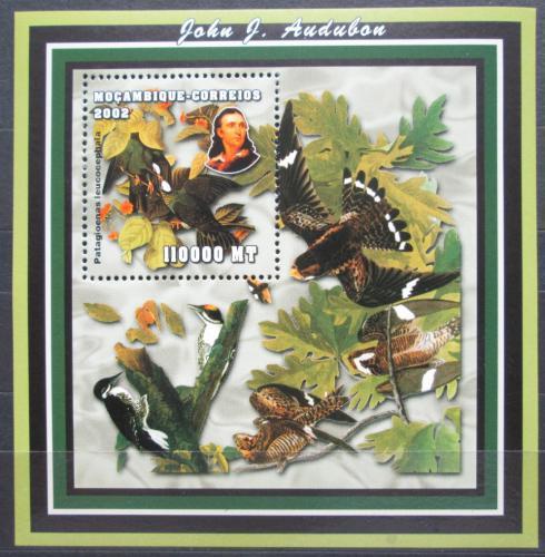 Poštovní známka Mosambik 2001 Ptáci, Audubon Mi# Block 163 Kat 11€