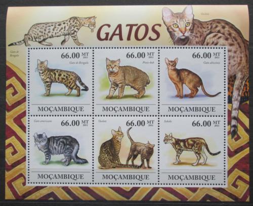 Poštovní známky Mosambik 2011 Koèky Mi# 5344-49 Kat 23€