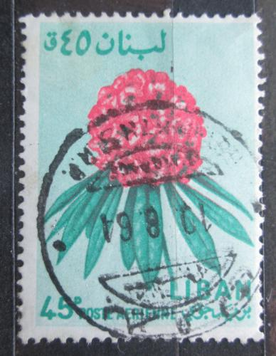Poštovní známka Libanon 1964 Mamota širokolistá Mi# 860