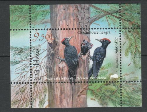 Poštovní známka Moldavsko 2018 Datel Mi# Block 79