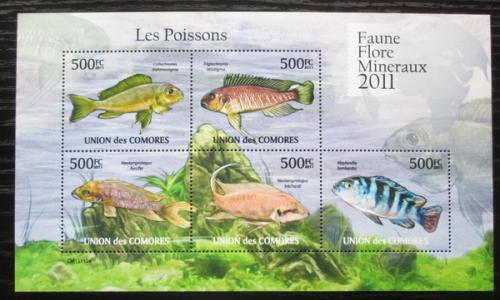 Poštovní známky Komory 2011 Sladkovodní ryby Mi# 3001-05 Bogen Kat 12€