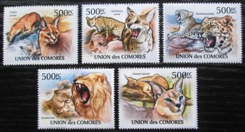 Poštovní známky Komory 2011 Koèkovité šelmy Mi# 3058-62 Kat 12€