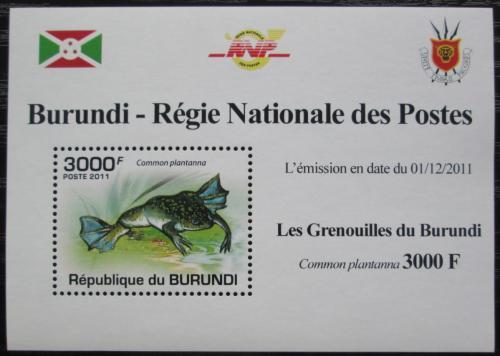 Poštovní známka Burundi 2011 Žába DELUXE Mi# 2068 Block