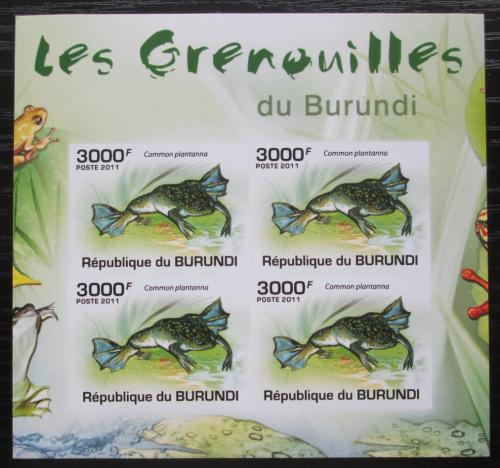 Poštovní známky Burundi 2011 Žáby neperf. Mi# 2068 B Bogen