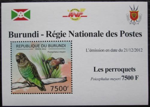 Poštovní známka Burundi 2013 Papoušek žlutotemenný DELUXE Mi# 2817 Block