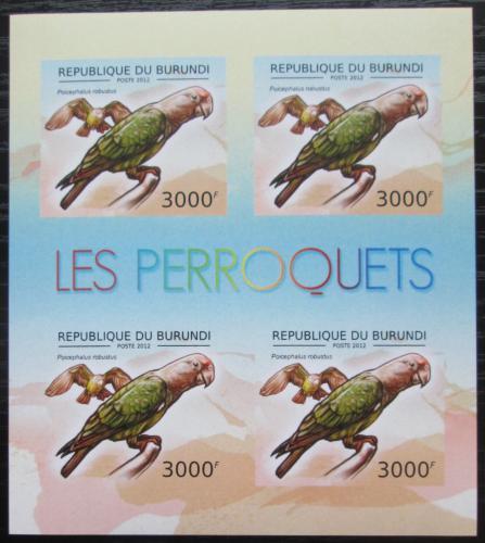 Poštovní známky Burundi 2013 Papoušek kapský neperf. Mi# 2815 B Bogen