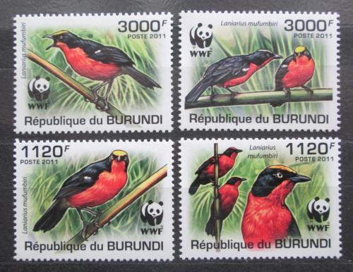 Poštovní známky Burundi 2011 �uhýkovec papyrusový, WWF Mi# 2126-29 b Kat 9.50€
