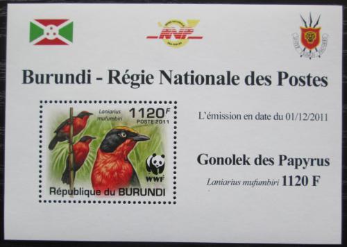 Poštovní známka Burundi 2011 �uhýkovec papyrusový, WWF DELUXE Mi# 2126 b Block