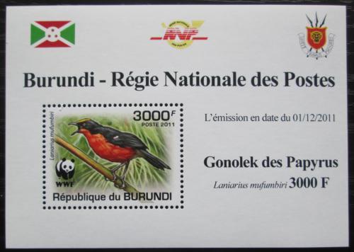 Poštovní známka Burundi 2011 �uhýkovec papyrusový, WWF DELUXE Mi# 2128 b Block