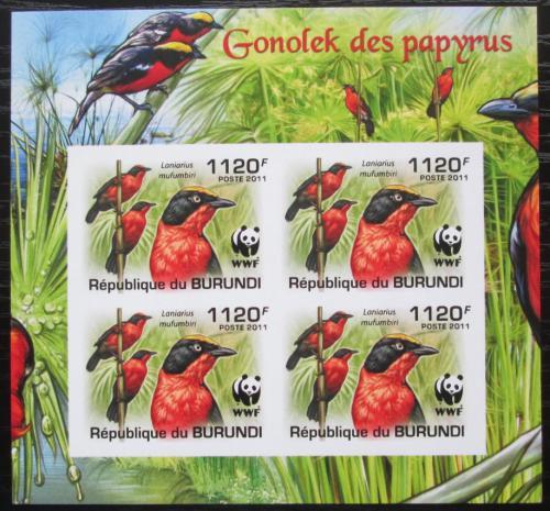 Poštovní známky Burundi 2011 �uhýkovec papyrusový, WWF neperf. Mi# 2126 b Bogen