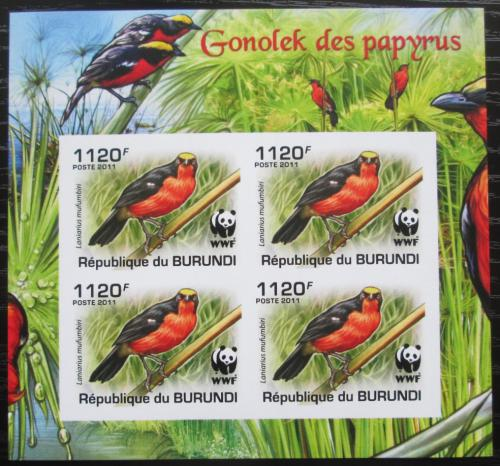 Poštovní známky Burundi 2011 �uhýkovec papyrusový, WWF neperf. Mi# 2127 b Bogen
