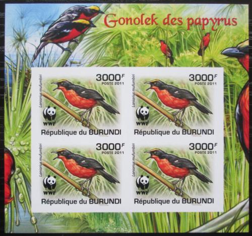 Poštovní známky Burundi 2011 �uhýkovec papyrusový, WWF neperf. Mi# 2128 b Bogen