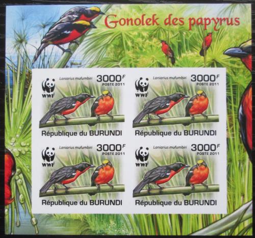 Poštovní známky Burundi 2011 �uhýkovec papyrusový, WWF neperf. Mi# 2129 b Bogen