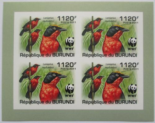 Poštovní známky Burundi 2011 �uhýkovec papyrusový, WWF neperf. Mi# 2126 a Bogen