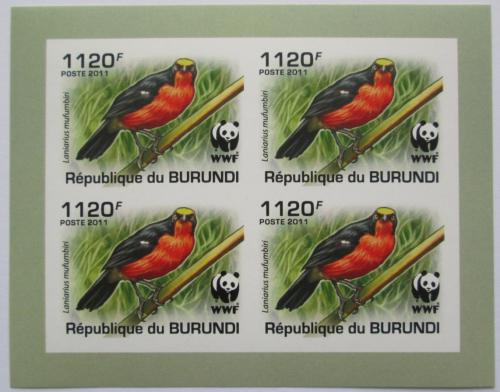 Poštovní známky Burundi 2011 �uhýkovec papyrusový, WWF neperf. Mi# 2127 a Bogen