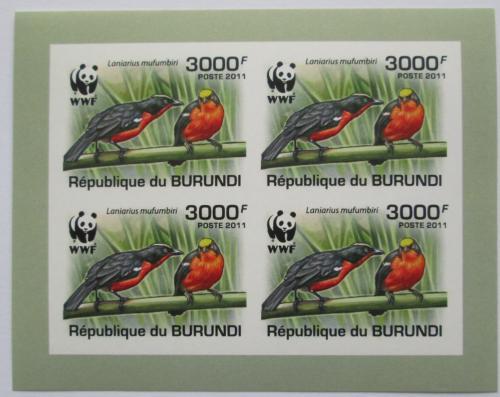 Poštovní známky Burundi 2011 �uhýkovec papyrusový, WWF neperf. Mi# 2129 a Bogen