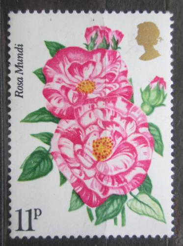 Poštovní známka Velká Británie 1976 Rùže Mi# 713