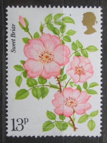 Poštovní známka Velká Británie 1976 Rùže Mi# 714