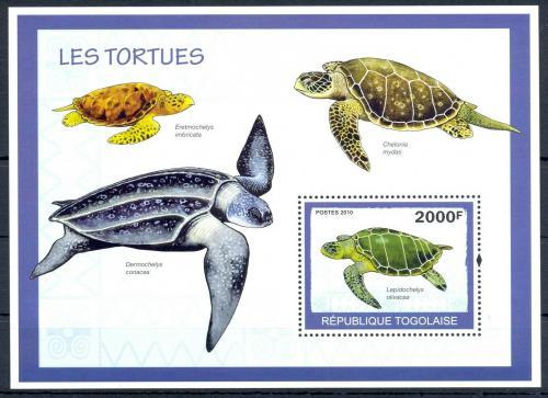 Poštovní známka Togo 2010 Želvy Mi# Block 496 Kat 8€