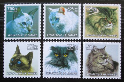 Poštovní známky Guinea 2002 Koèky Mi# N/N
