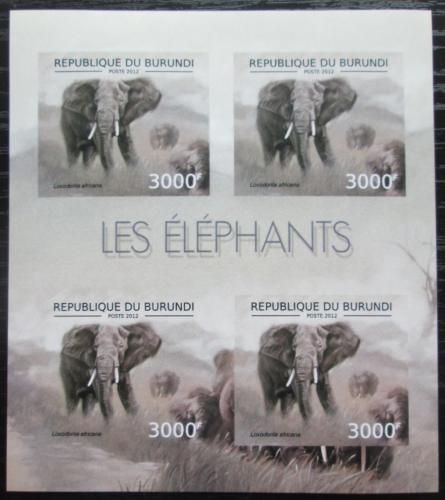 Poštovní známky Burundi 2012 Slon africký neperf. Mi# 2835 B Bogen