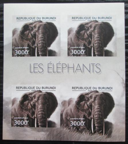 Poštovní známky Burundi 2012 Slon africký neperf. Mi# 2836 B Bogen