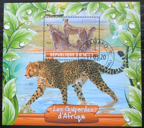 Poštovní známka Mali 2020 Gepardi Mi# N/N