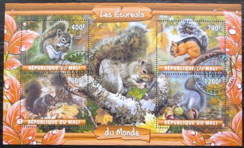 Poštovní známky Mali 2020 Veverky Mi# N/N