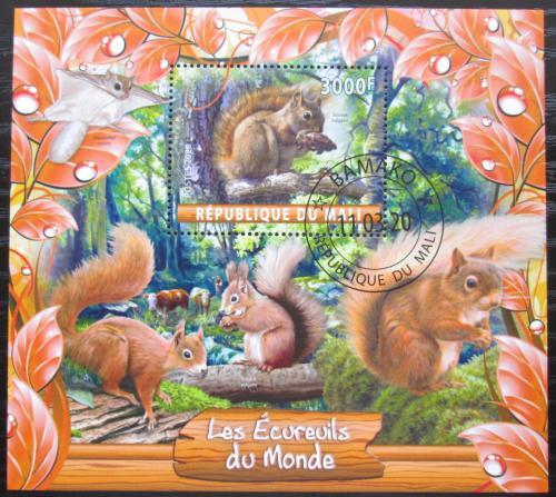 Poštovní známka Mali 2020 Veverky Mi# N/N