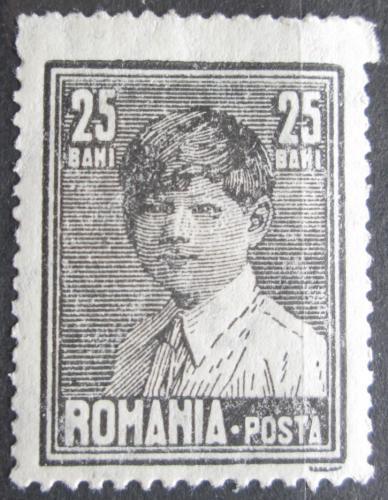 Poštovní známka Rumunsko 1928 Král Michael I. Mi# 353