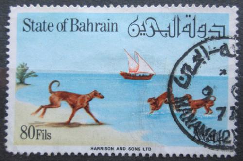 Poštovní známka Bahrajn 1977 Saluki Mi# 266