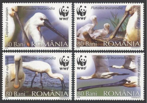 Poštovní známky Rumunsko 2006 Kolpík bílý, WWF Mi# 6134-37