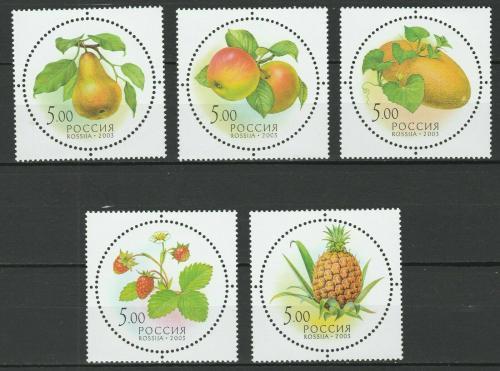 Poštovní známky Rusko 2003 Ovoce Mi# 1113-17 Kat 6€