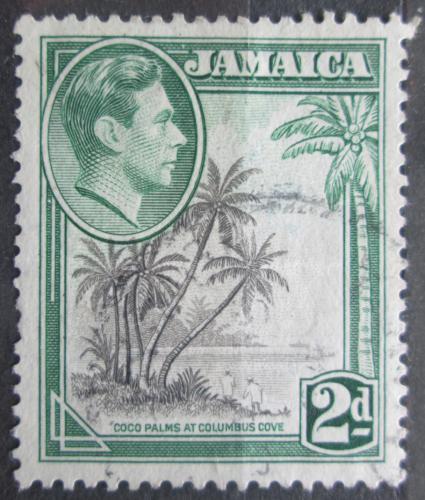 Poštovní známka Jamajka 1938 Kokosové palmy Mi# 123 C