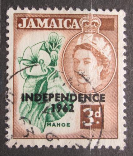 Poštovní známka Jamajka 1962 Ibišek pøetisk Mi# 186