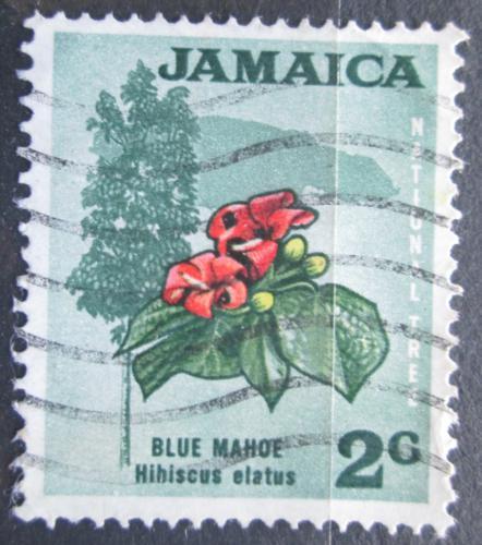 Poštovní známka Jamajka 1970 Ibišek pøetisk Mi# 309