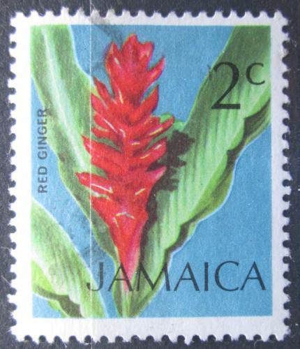 Poštovní známka Jamajka 1972 Místní flóra Mi# 346