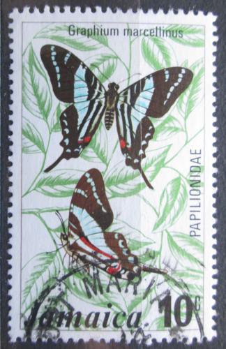 Poštovní známka Jamajka 1975 Motýl, Graphium marcellinus Mi# 398