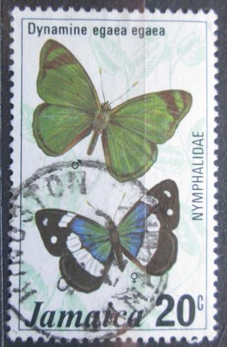 Poštovní známka Jamajka 1977 Motýl, Dynamine egaea Mi# 424