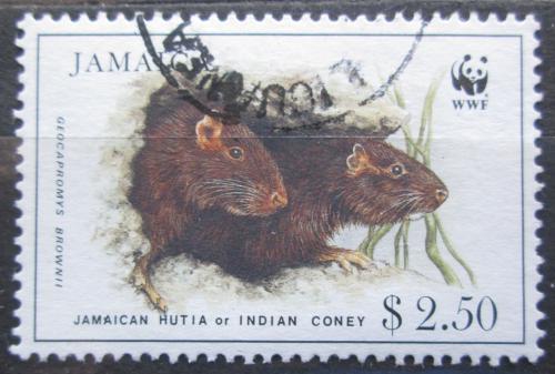Poštovní známka Jamajka 1996 Jamajský coney, WWF Mi# 882